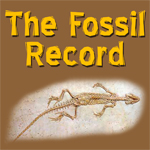 Fossil-Record-Img
