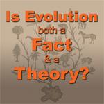 Why-Evolution-image
